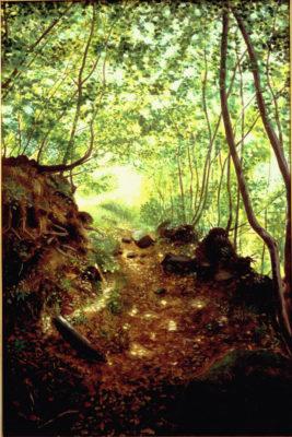 sentieri bosco pittura